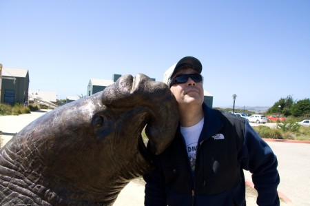 Chris and elephant seal